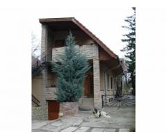 Star Mountain House, a pizzeria and a studio apartment with a very discounted price!